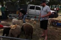 CITP Farm