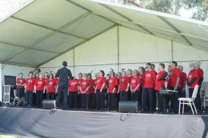 Canberra Community Voices